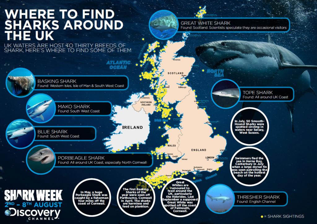 shark week uk infographic