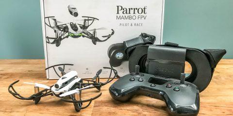 Parrot_Mambo