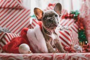 christmas teech gift guide